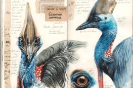 Dans la tête et le cou de l'oiseau