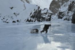 Les dix plus beaux carnets de voyage en montagne …