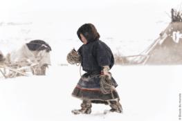 Arctique : sur les traces de l'ours