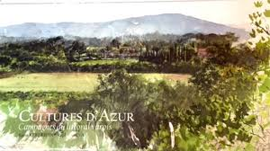 Cultures d'Azur