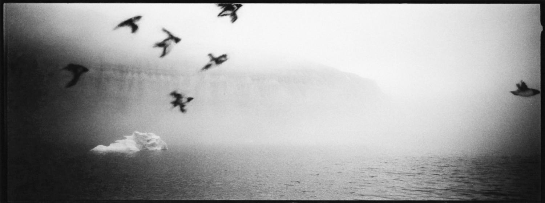récit de voyage : la géographie de la glace, photographie Benjamin Ruffieux, Arctique