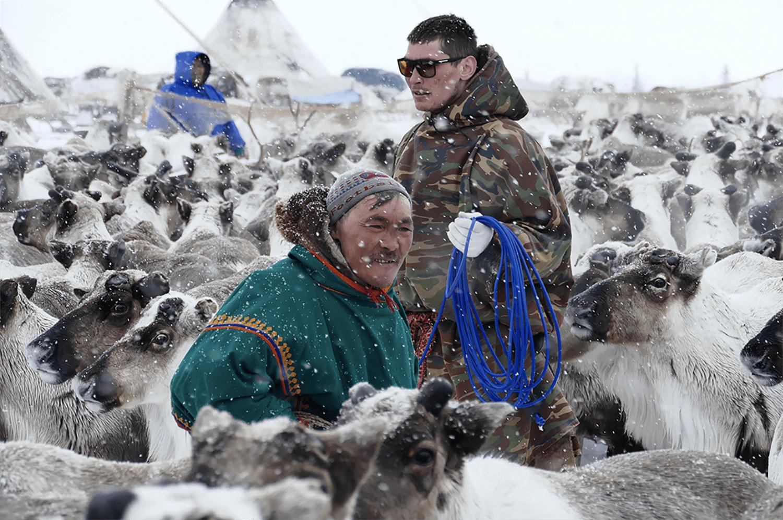 Carnet de voyage : Chez les nenets du Yamal, Sibérie, Jacques Ducoin, photographies