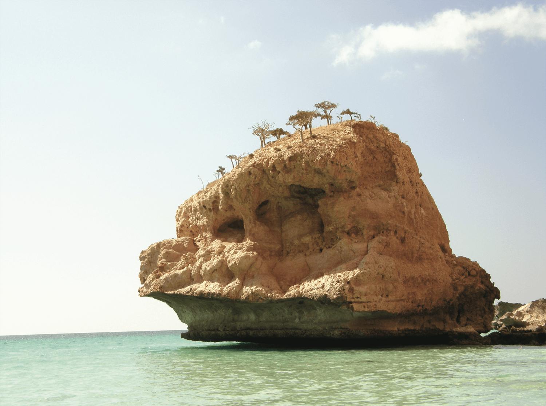 Carnet de voyage : Lîle de Socotra, une autre planète - Antoine Calvino - Bouts du monde