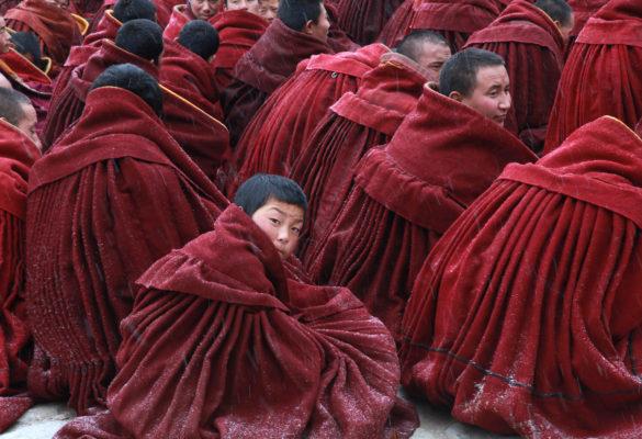 tirages d'art photo : le jeune moine, monastère de Labrang, Tibet, par Thérèse Bodet - Bouts du monde