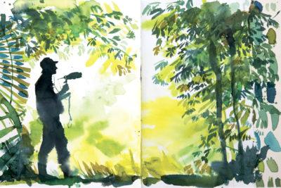 Stéphanie Ledoux : tirage d'art dessin L'ornithologue, Papouasie - Bouts du monde
