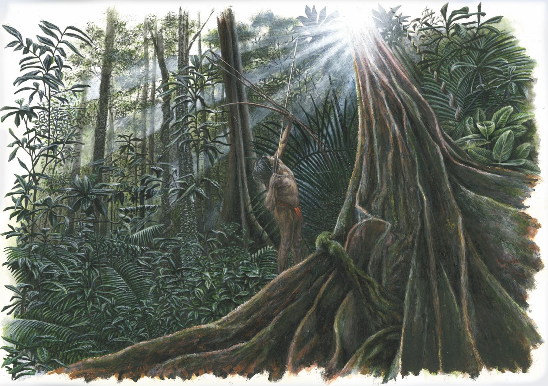 Chasseur à l'arc dans la forêt d'Amazonie