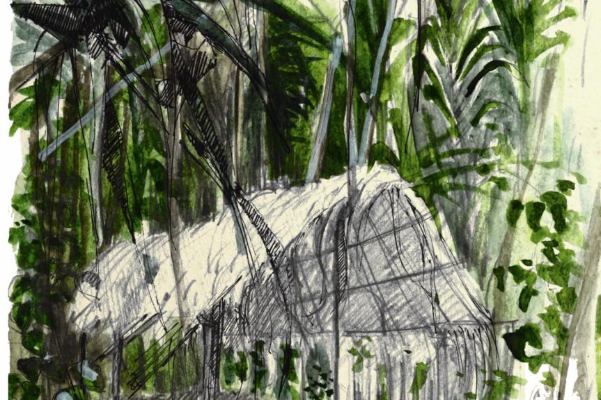 Au cœur de la jungle amazonienne