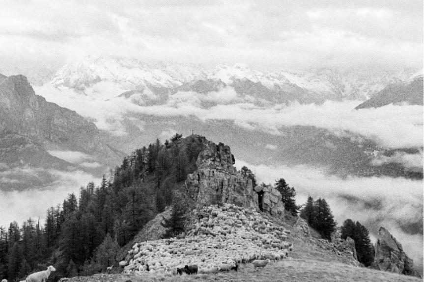 La bergère