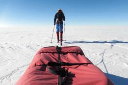 Jusqu'au pôle