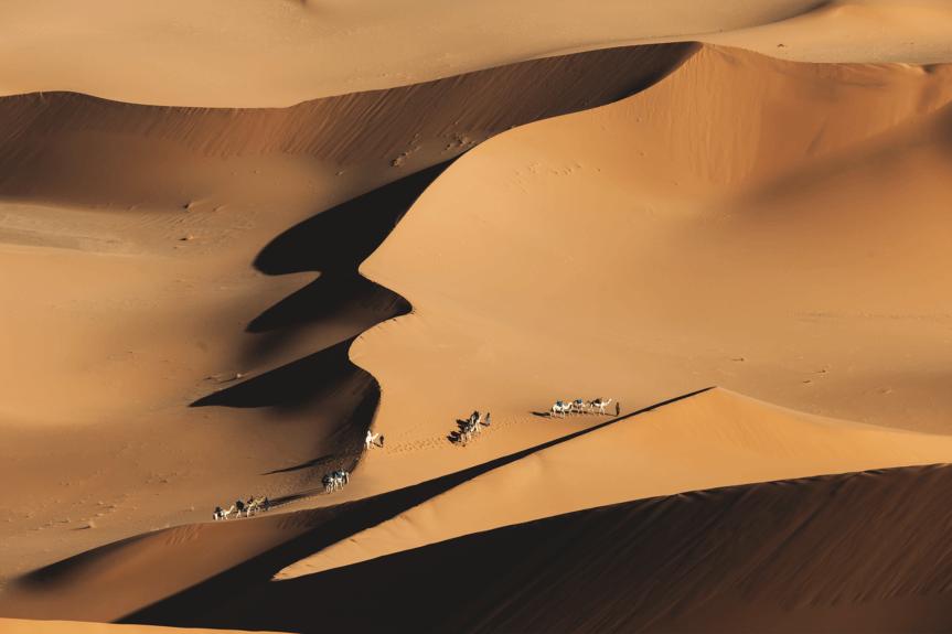 L'ivresse du sable