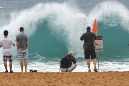 Just surf in Hawaii