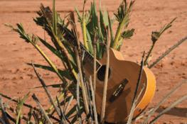 La musique du désert