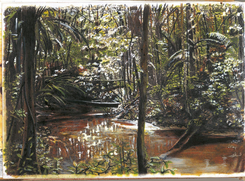 Etienne Druon - Amazonie