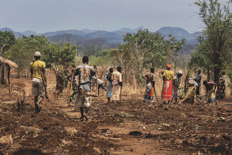 Revue de voyage Malawi